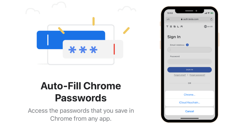How to Get Google Chrome Passwords on iPhone, iPad - AutoFill from any app